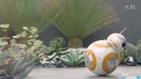 【触动力】超级萌宠,星球大战机器人sphero BB-8