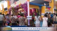 2015東盟博覽會第二天 眾多泰國品牌亮相