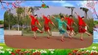 南阳和平广场舞系列  今生最美的遇见(团队版)