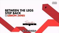 【NBA篮球招牌动作】詹姆斯James胯下运球后撤步