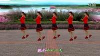 彩虹云子广场舞《南泥湾》八步