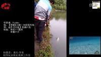 路亚31斤鲶鱼高清视频