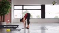 FitTime瑜伽课堂 Vinyasa(串连)篇(第二天)