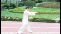李海水老师演练传统杨氏太极拳八十五式