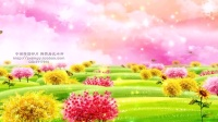 CP745草坪蝴蝶飞舞 唯美云彩 儿童卡通LED屏幕动态视频背景素材