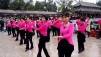 天津水上公园:吉特巴舞队周年庆·精彩纷呈的纪实表演情景(1)