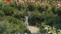 秦腔电视剧《山里世界》精彩两段 梅花奖惠敏莉演唱_高清