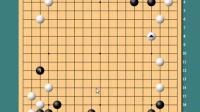 老刘围棋讲座系列之《谱说天下2布局》