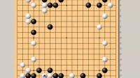 老刘围棋讲座系列之《谱说天下3中盘》