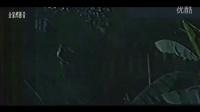 中越自卫反击战【黑豹突击队】1988(全集)宽屏高清版