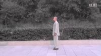 正宗杨氏太极拳85式教学(精讲1)  永年李占英 2012年新版_高清