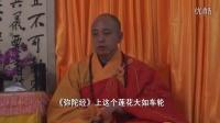 昌义法师2010年精进念佛七(七七第六天)