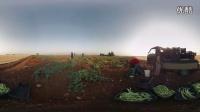 【微软Hololens全息现实网】VR纪录片:《流离失所》《The Displaced》