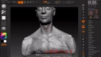人体结构006头颈肩作业讲解及修改