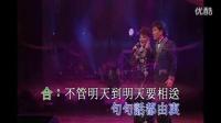 《今宵多珍重》谢雷 杨燕  KTV歌曲卡拉OK字幕