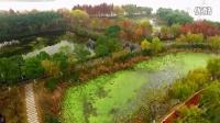 武汉人必去!最大国家级城市湿地公园