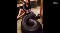 大到不可思议的蛇