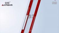 金稻KD-9918水光嫩肤仪产品使用详细介绍