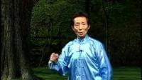 4、张勇涛杨式太极拳126式第四段动作详解