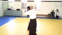 Aikido Vs Boxing practice