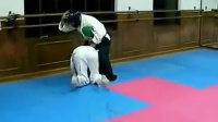 合气道vs跆拳道实战能力