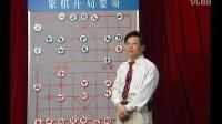 胡荣华象棋讲座-开局02