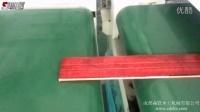 【成都森联】多层实木贴角线着色机