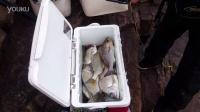 《游钓珠海》第一集之渔获花絮:万山老鼠洲海钓矶钓渔获