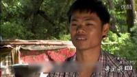 毒宴!体验泰国小吃油炸毒蝎