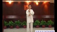 赵幼斌详解杨氏太极拳85式之手挥琵琶