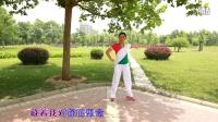 糖豆广场舞蹈视频大全【爱的期限】广场舞