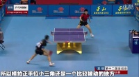 《湿父教球》第6集:樊振东反手侧拧技术_乒乓球教学视频教程