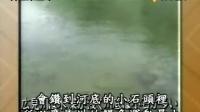 2003 - 06 - 18 海膽丼v.s 鰻魚丼