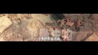甲壳素视频