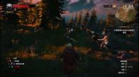 【随便】巫师3:狂猎全流程第四章:尼弗迦德的线人