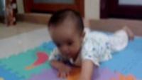 早教-可爱的宝宝学爬