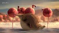 翻滚吧!全球最胖动物搞笑视频01@全球教程榜