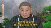 《2014无量寿经科注第四回学习班-字幕版》(199)