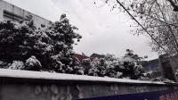 2015年底的一场雪