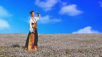 大美青海 青藏高原风景 草原歌曲联唱 青海湖  美女 高原风光 青藏美景视觉盛宴 高清