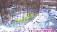 张唐铁路中铁十二局集团第七项目部施工纪实