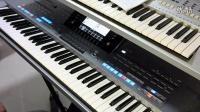 《山茶花》  yamaha节奏 风格 演示 电子琴 键盘中国