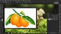 PS cc2015版全解视频教程 39 路径和矢量蒙版
