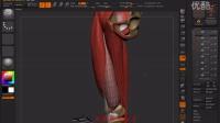 2015-01-26腿部骨骼结构下