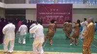 河南省中原大舞台武术展示商丘站