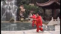 杭州吴山第一峰陈西葵32式太极剑