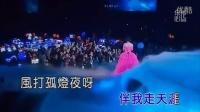 杨钰莹-又见雨夜花MTV(现场版)