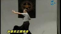 Ip Ching - Biu Gee 葉正 - 標指 -_标清