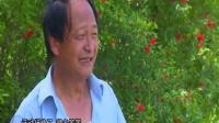 三门峡市湖滨区东坡村党建专题片