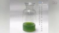 小球藻最新培养方法流程